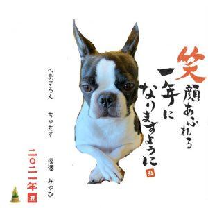 新年のご挨拶〜群馬県前橋市の美容室〜